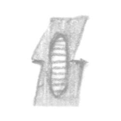 http://jasonlyart.com/files/gimgs/th-69_row28_2_v2.jpg